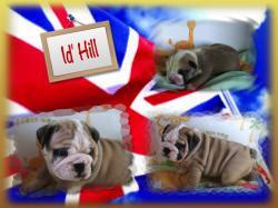 Id'hill