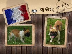 Ixy grek 3