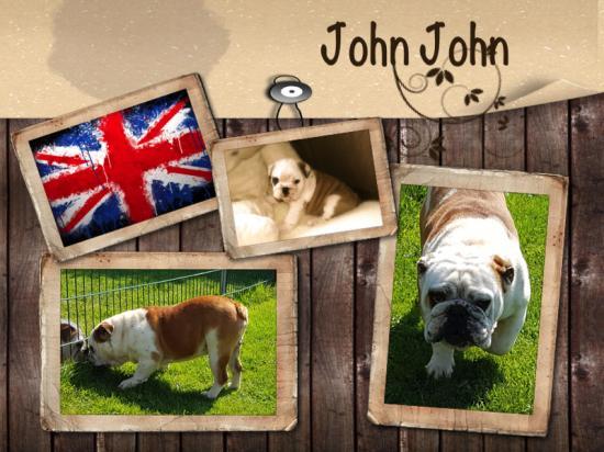 John john adulte