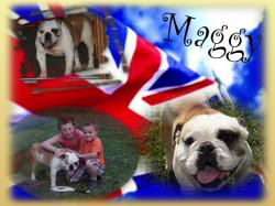 Maggy fond 2