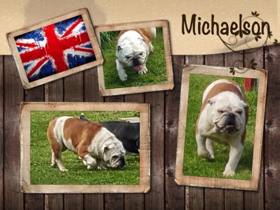 Michaelson