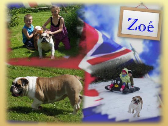 Zoe fond 1