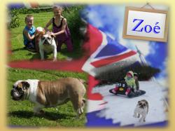 Zoe fond