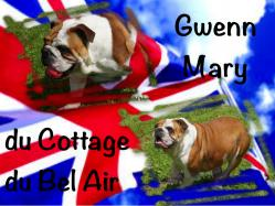 gwenn-mary-du-cottage-du-bel-air.jpg