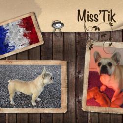 Miss'Tik
