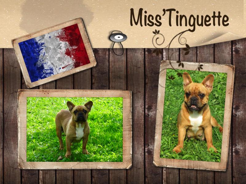 Miss'Tinguette